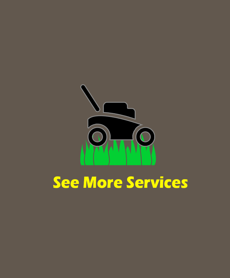 See More Services